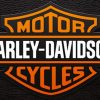 Harley-Davidson on the Nature of Leather