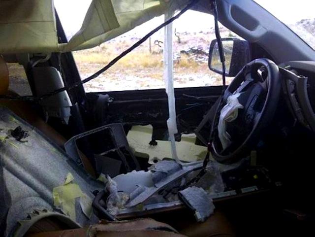 when bears attack car interiors 1. Black Bedroom Furniture Sets. Home Design Ideas