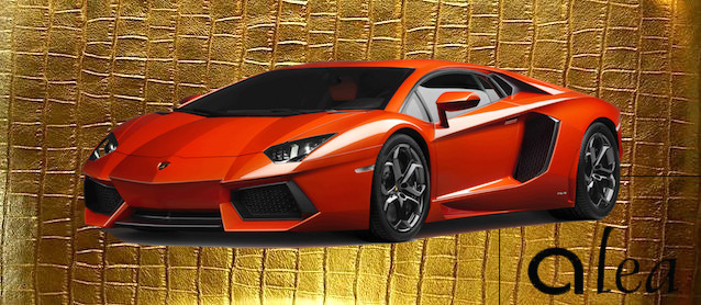Auto Upholstery - The Hog Ring - Alea leather Lamborghini Aventador