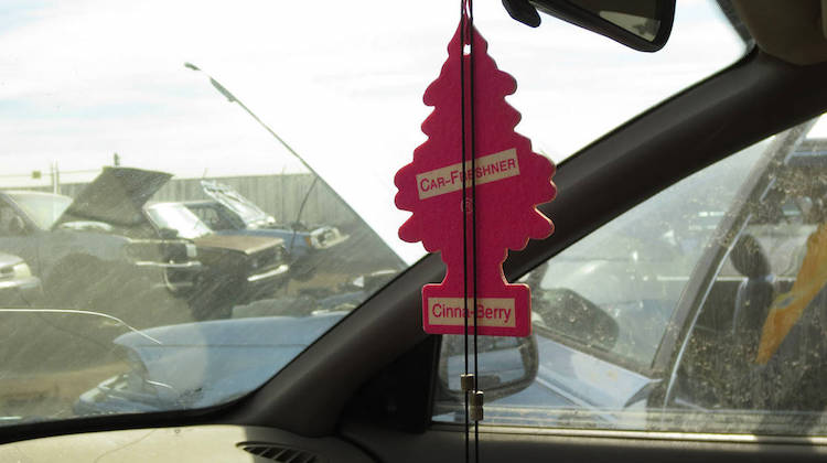 The Hog Ring - The Story Behind Little Trees Air Fresheners