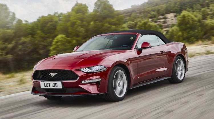 The Hog Ring - 2019 Ford Mustang