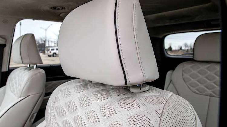 The Hog Ring - The Hyundai Palisade Leather Interior Stinks