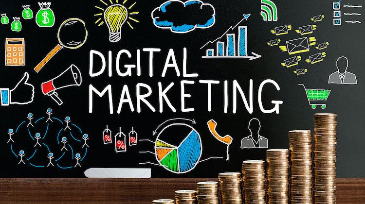 The Hog Ring - Register for this Free Webinar on Digital Marketing