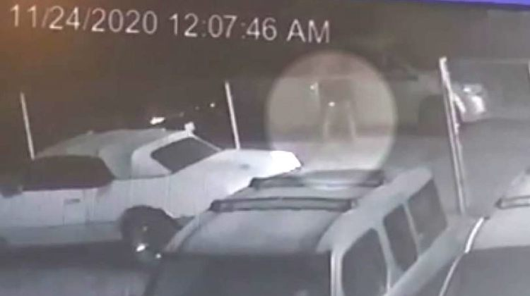 The Hog Ring - A Serial Pooper is Targeting Michigan Auto Shops